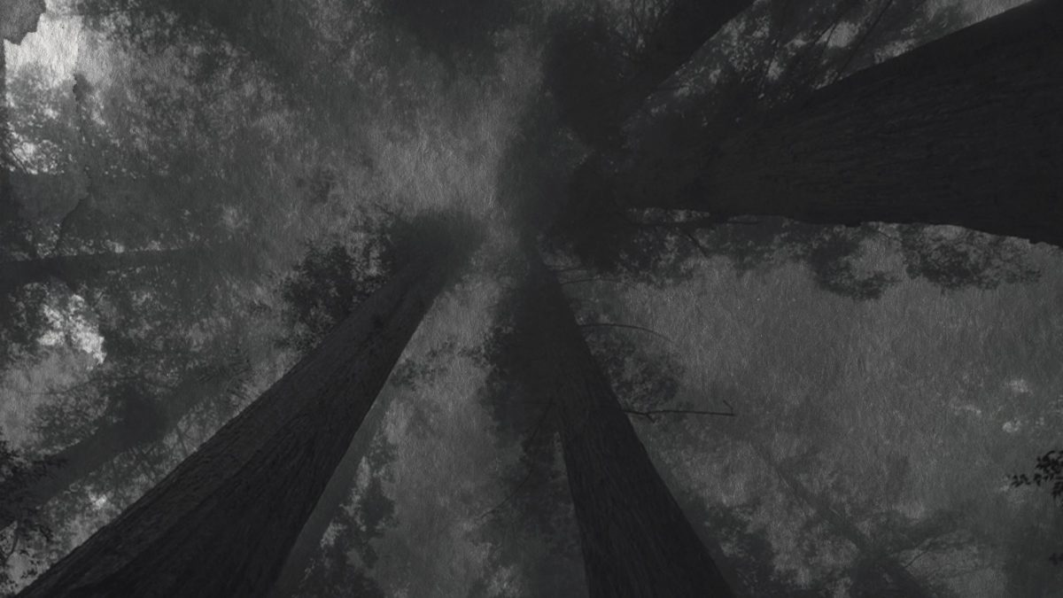 Image from PASSAGE Short Film Visualizer